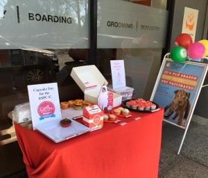 Cupcake day table at the ark veterinary hospital
