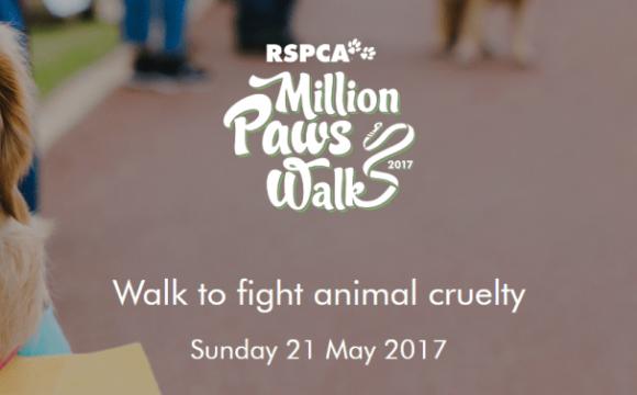 RSPCA Million Paws Walk 2017   Ark Vets