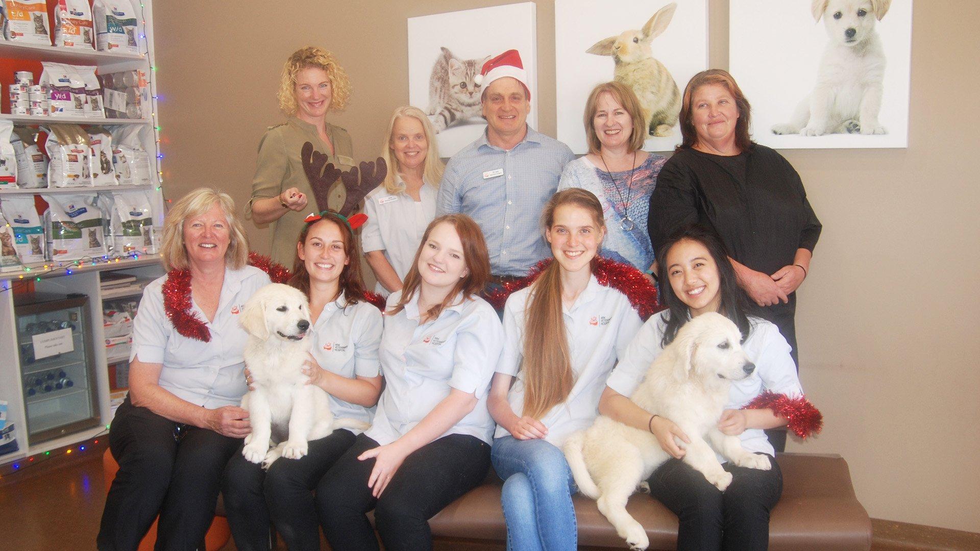 Team ark Veterinary Hospital Lindfield