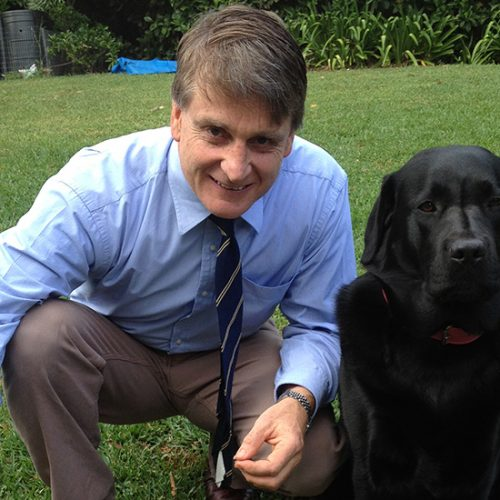 Pet behaviour and puppy training