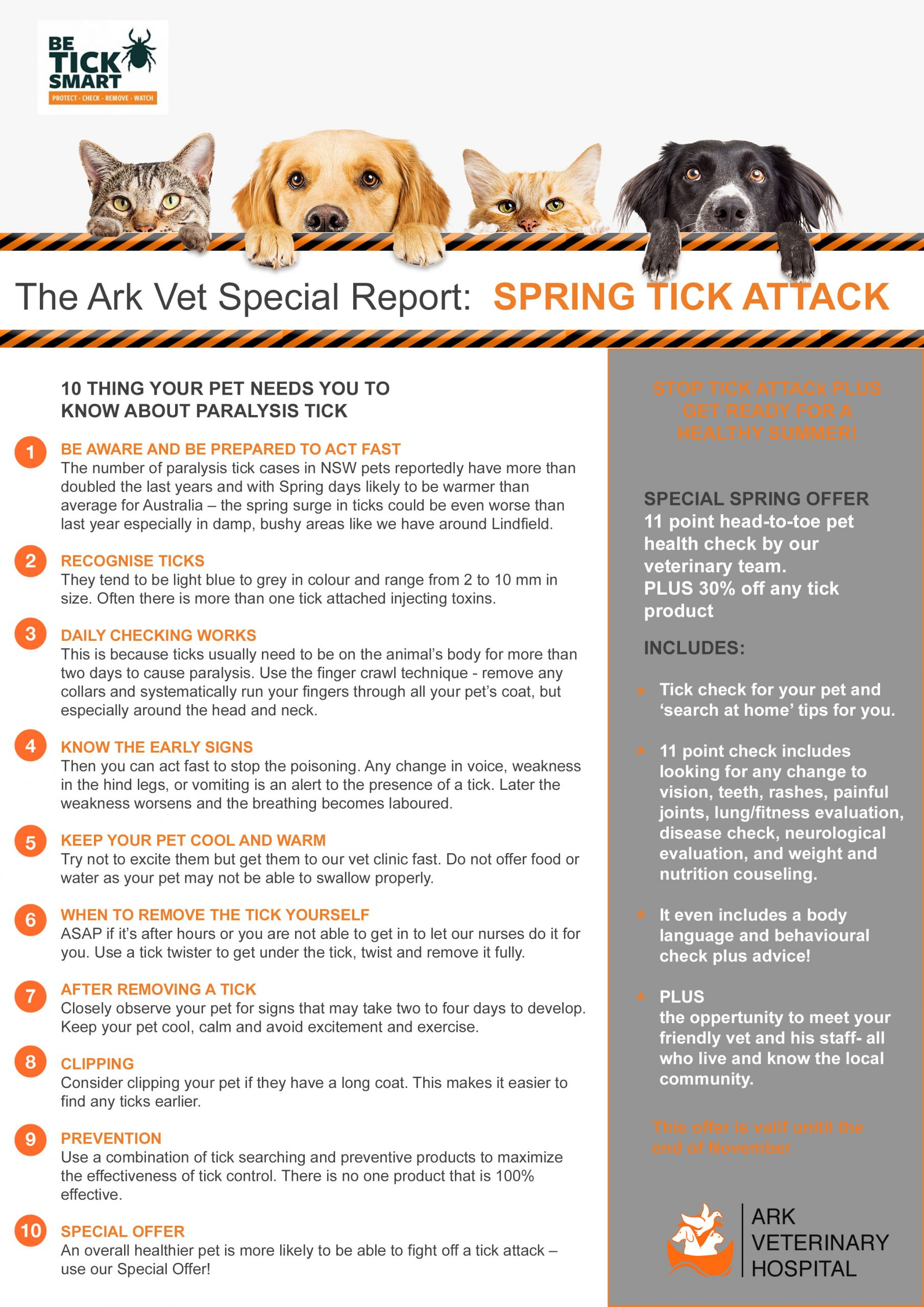 Tick report; what to do when your pet has a tick