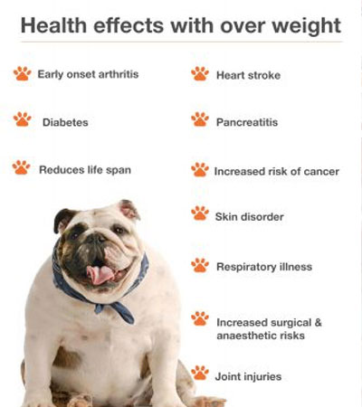 health effects with over weight