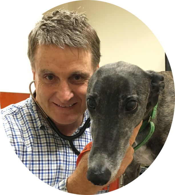 dr. joe daley, veterinarian