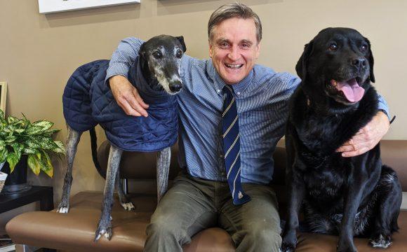 Senior Pet Care in Winter