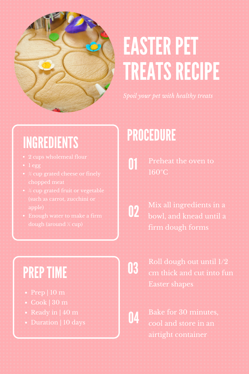 dog treats recipe